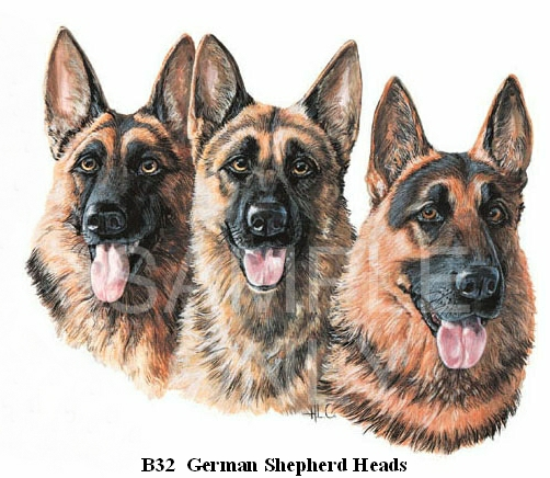 German Shepherd Dog Heads
