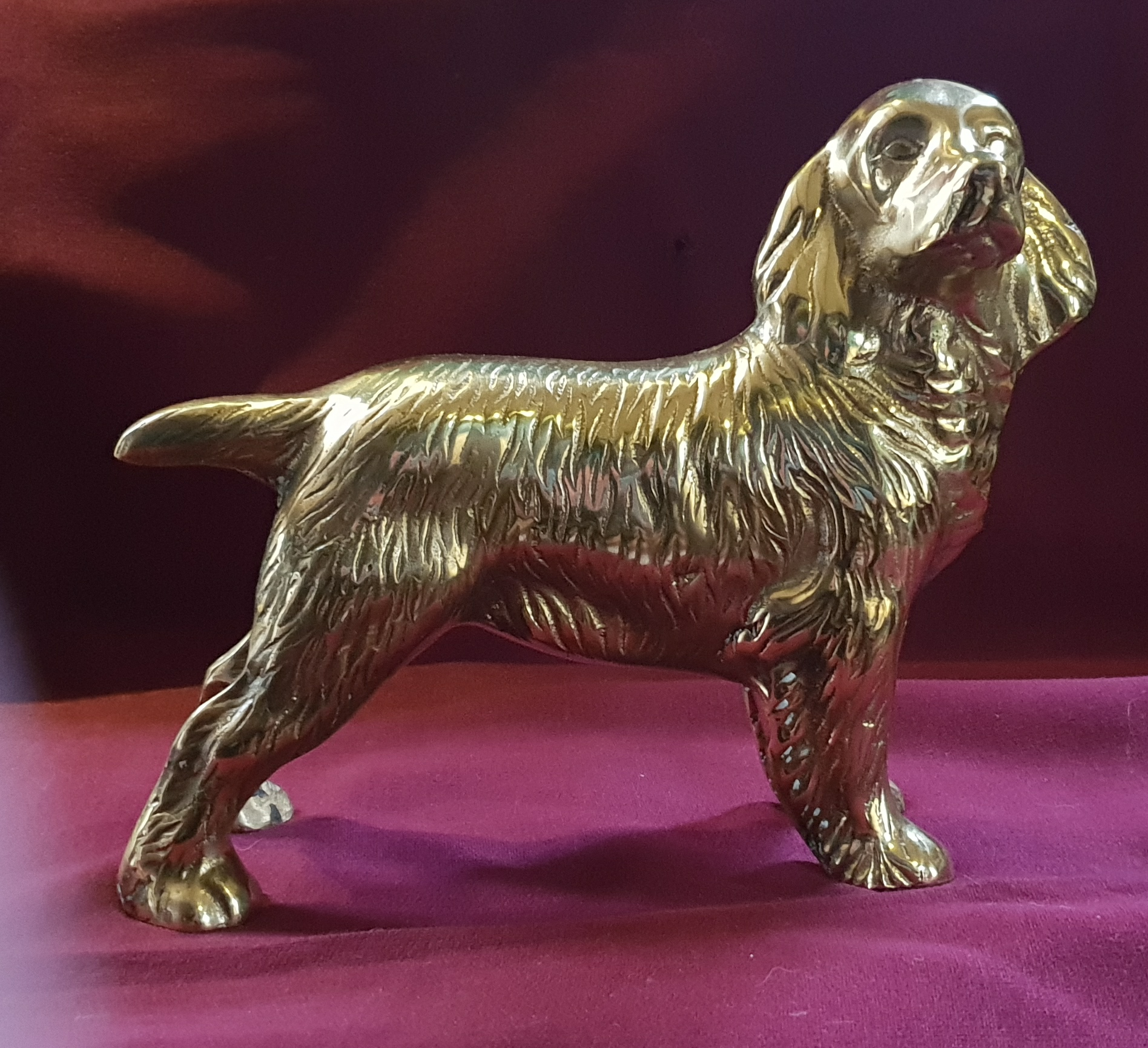 Cocker Spaniel Tiller Pin
